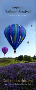 Hot air balloons flying over Sequim lavendar fields on the Olympic Peninsula of Western Washington